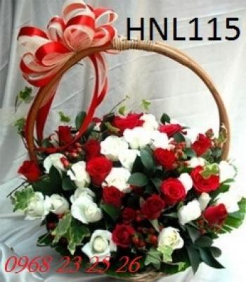 hoa ngay le hnl115