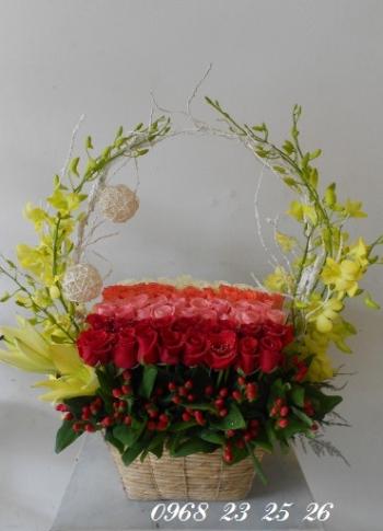 hoa ngay le hnl131