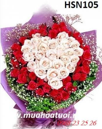 hoa sinh nhat hsn105