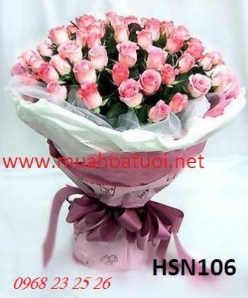 hoa sinh nhat hsn106