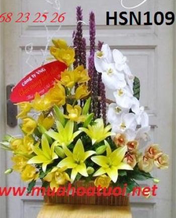 hoa sinh nhat hsn109