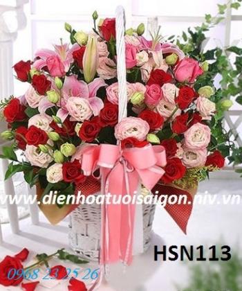 hoa sinh nhat hsn113