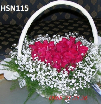 hoa sinh nhat hsn115