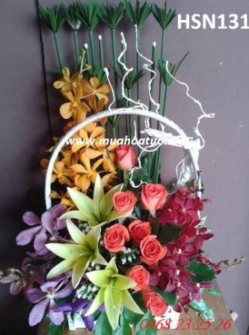 hoa sinh nhat hsn131