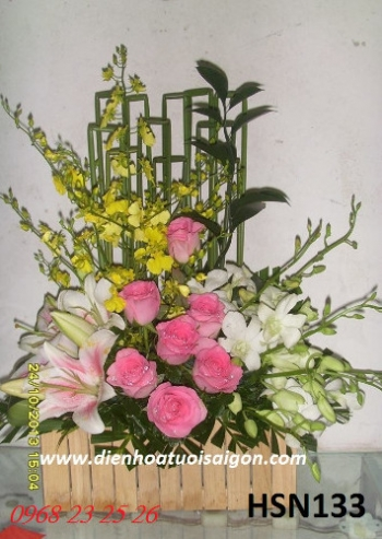 hoa sinh nhat hsn133