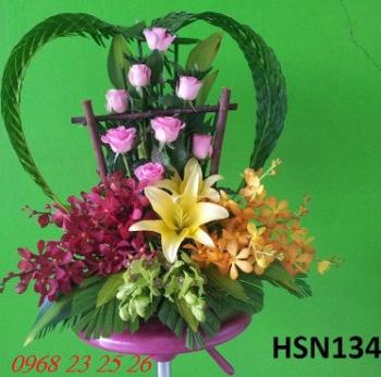 hoa sinh nhat hsn134
