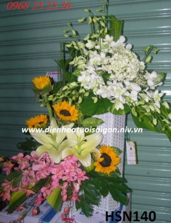 hoa sinh nhat hsn140