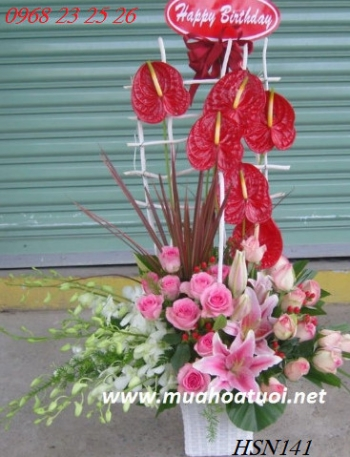 hoa sinh nhat hsn141
