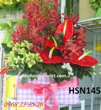 hoa sinh nhat hsn145