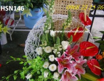 hoa sinh nhat hsn146
