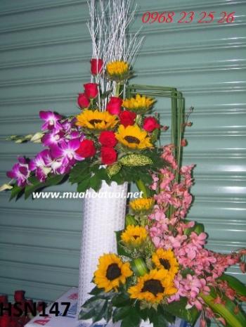 hoa sinh nhat hsn147