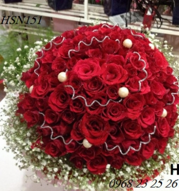 hoa sinh nhat hsn151
