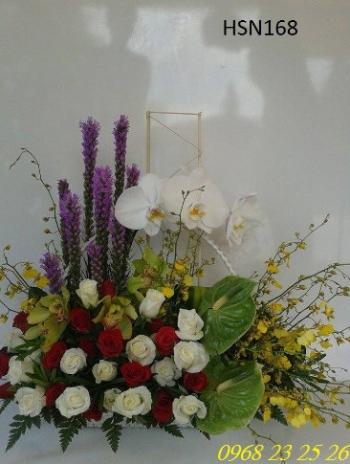 hoa sinh nhat hsn168
