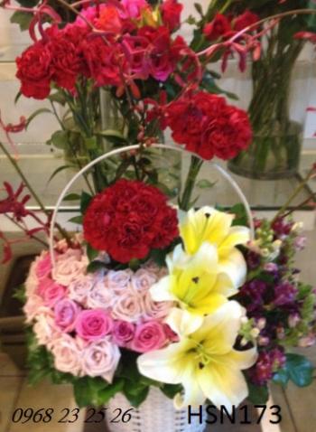 hoa sinh nhat hsn173