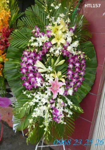 hoa tang le htl157