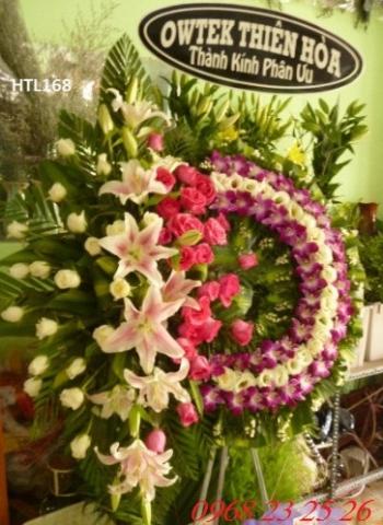 hoa tang le htl168