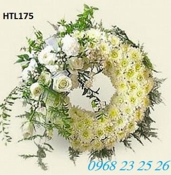 hoa tang le htl175