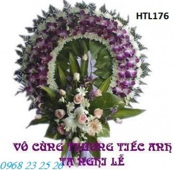 hoa tang le htl176