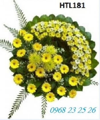 hoa tang le htl181