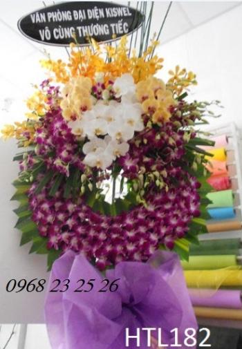 hoa tang le htl182