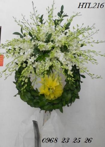 hoa tang le htl216