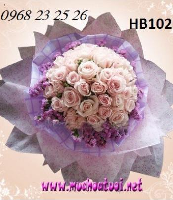 hoa bo hb102