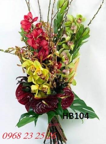 hoa bo hb104