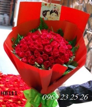 hoa bo hb111