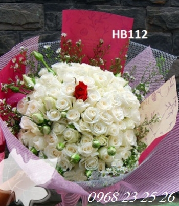 hoa bo hb112