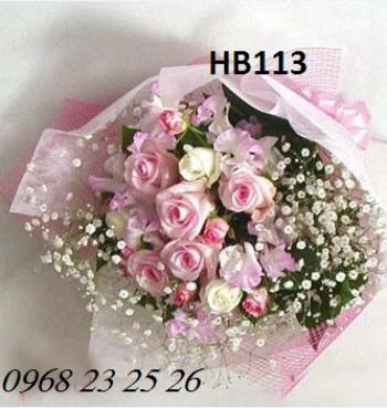 hoa bo hb113