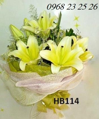 hoa bo hb114