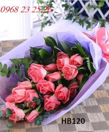 hoa bo hb120