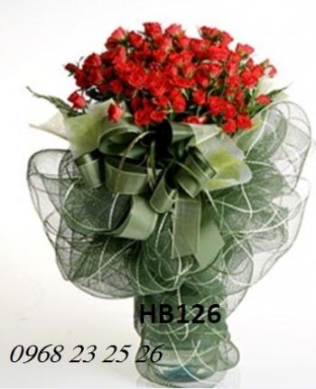 hoa bo hb126