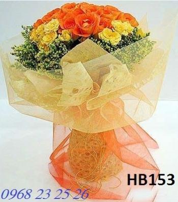 hoa bo hb153
