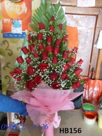 hoa bo hb156