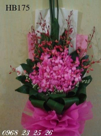 hoa bo hb175