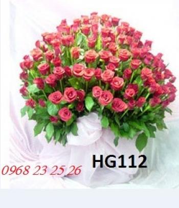 hoa gio hg112