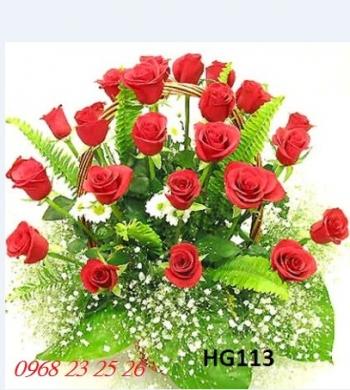 hoa gio hg113
