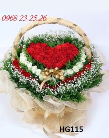 hoa gio hg115