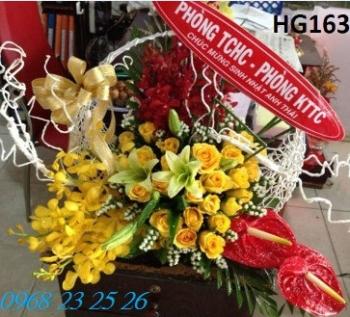 hoa gio hg163