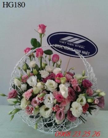 hoa gio hg180