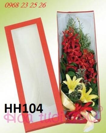 hoa hop hh104