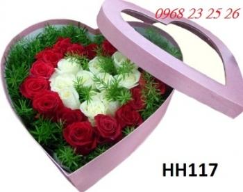 hoa hop hh117